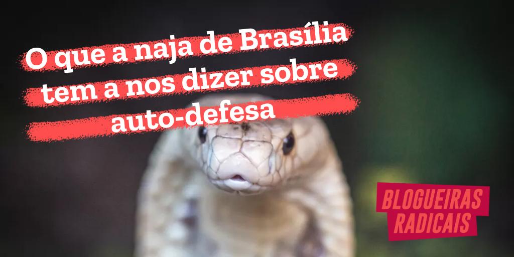 O que a naja de Brasília tem a nos dizer sobre auto-defesa